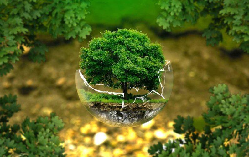 Protection de la nature et écologie