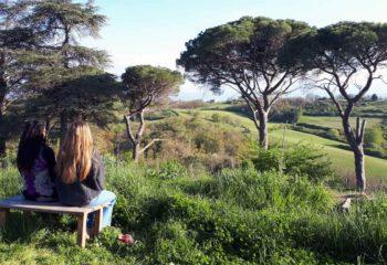 Tristesse, contemplation du paysage