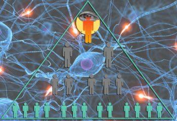 Pyramide du pouvoir et organisme vivant